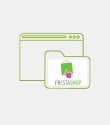 Prestashop custom Developments